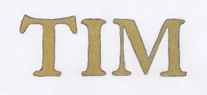 Tim - Cover font 1 by Pumpkinwaffle