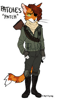 Patches ref by captyns