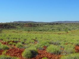 The Outback by SunOwl