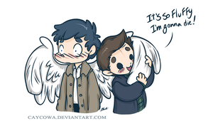Destiel - So fluffy by caycowa