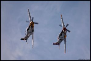 Horsemen Duo by AirshowDave