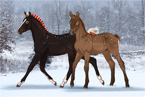 Chirstmas foal breeding slot auction - closed by PaleMount