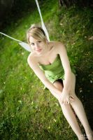 Tinkerbell - 3 by alucardleashed