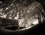 Peaceful forest lake infrared by MichiLauke