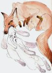 Fox and Rabbits by quietsecrets