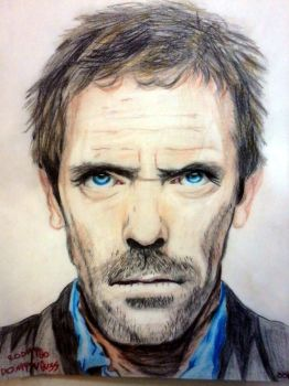 Hugh Laurie by RodrigoDomingues