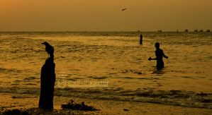 viewfinder 0034 by sudhithxavier