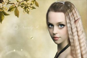 The Fairy by Nataly1st