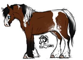 RS Black Cherry 'Cherry' Mare by Ritz-Stables