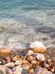 Dead Sea stones by FiLH