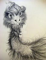Emus Simply Marvelous by HouseofChabrier