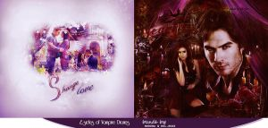 2 sides of Vampire Diaries Project by morena-mitchel