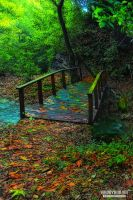 A bridge in paradise II by UgurDoyduk