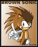 Hedgehogs: Brown Sonic by adamis