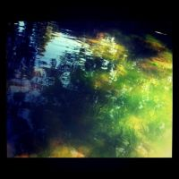 There's A Tree In My Pond by XuchilbaraPH