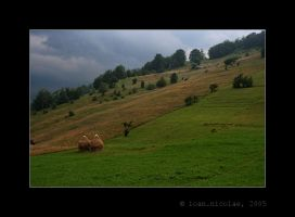 Waiting for the storm by ioannicolae