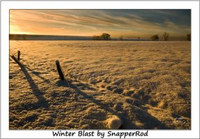 Winter Blast by SnapperRod