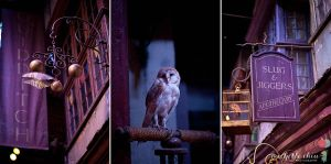 Welcome to Diagon Alley by MichelleChiu
