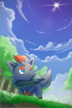 Just Zorua by Kampidh