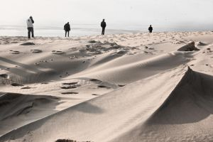 On the dune. by Thoum