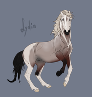 Flash Auction - Lydia by abosz007
