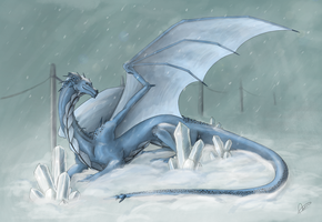 Winter - Dragon by WiiolisRus