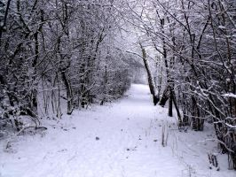 Snowy brook path by Lishu