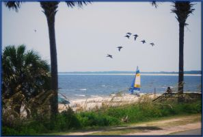 Mexico Beach July 2009... by LadyAliceofOz