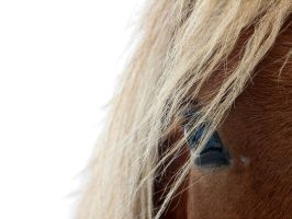 'The look' by Suensyan