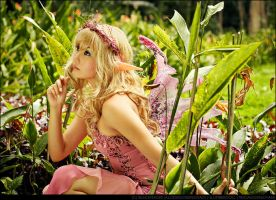 The Elven Fairy by BlackMageAlodia