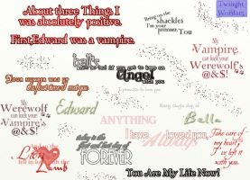 twilight word art by HaSiYnE
