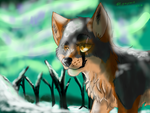 Winter's Lights by graystorm1234