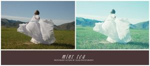 action: mint tea by alais-stock