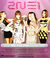 2NEvolution Poster by Hailoez