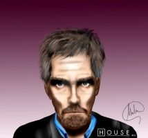 House MD by MarcSantana
