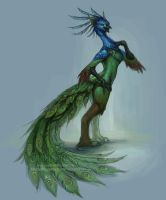 Peacock Gryphon Anthro Concept by The-SixthLeafClover