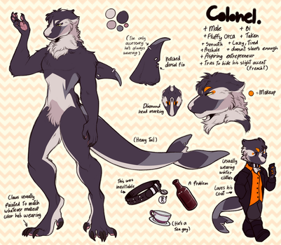 Colonel ref sheet by TODD-NET