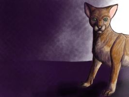 The Cat by BookThief17