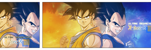 Sangoku and Vegeta by jaguar811