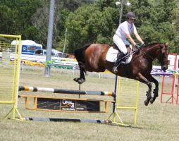 STOCK Showjumping 423 by aussiegal7