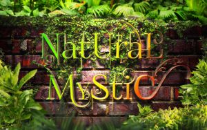 Natural Mystic 2560x1600 by MetodiIlchev