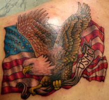 American Flag and Eagle: back by zradkins