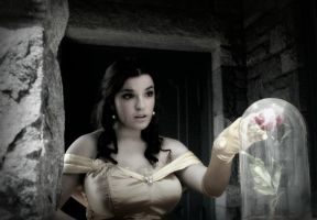 Princess Belle Cosplay - Curiosity by SparrowsSongCosplay