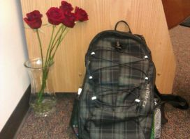 Roses and Backpack by LoveDot