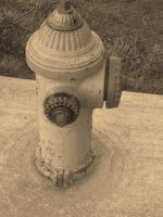 Fire Hydrant by wolfpupgrl14