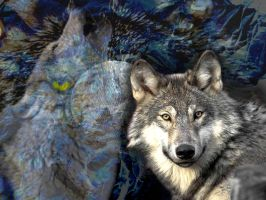 Nature Wallpaper - Wolf by Gojigirl