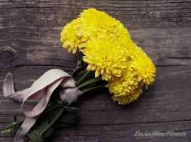 yellow flower by LuciaBlueFlower