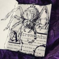 Fantastic Beasts: Acromantula by Divinidylle
