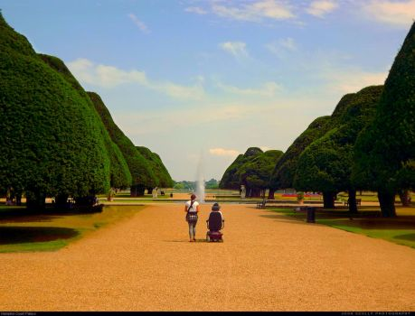 The Photographer, The Gardener, and Me by Szazomy