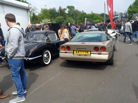 C1 and C4 'vette rear by Car-lover33